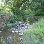 Woodlawn Stream Restoration