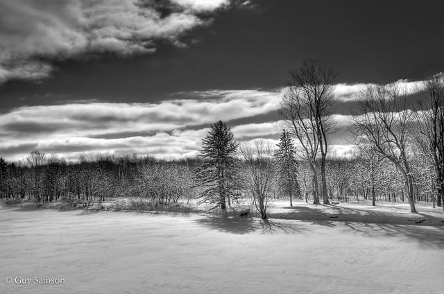 Paysage matinal / Morning Landscape