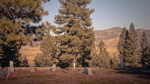 trees mountains graveyard pine forest hill graves sierras sierranevada pinetrees alpinevalley washedout 1770mm