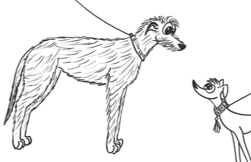 Comic-Whippet-u-Irish-Wolfhound