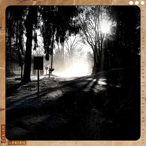 Morning fog by sirens_idyll