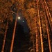Arashiyama 嵐山 - 16