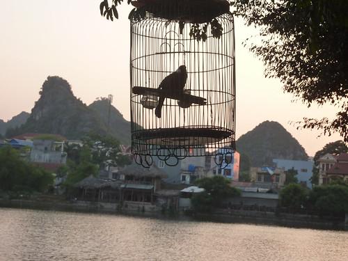 V-Lang Son-Lac Ho Phai Loan (11)