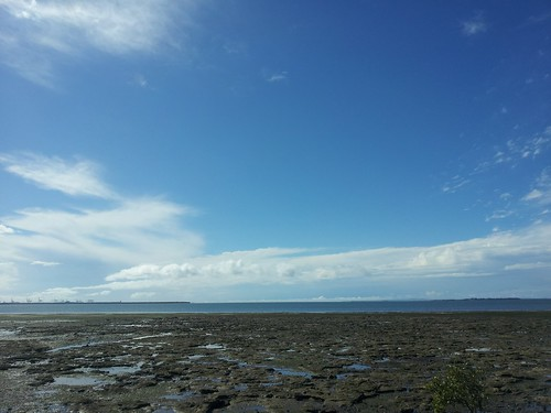 wynnum at low tide