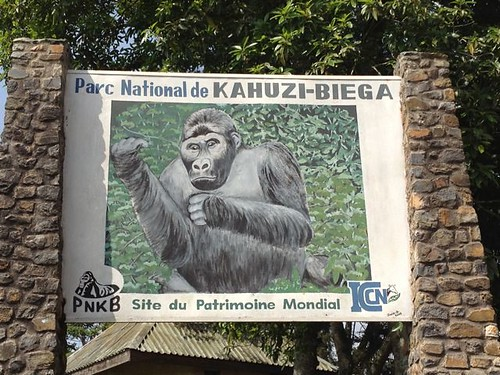 Kahuzi Biega National Park