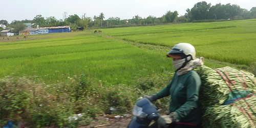 V-Route HCM-Buon Ma Thuot (188)