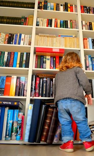 Bücherregal (http://www.pusteblumenbaby.de/)