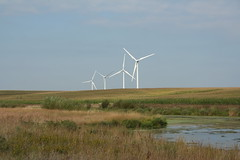 prairie, machine, polder, windmill, field, plain, wind, wind farm, rural area, wind turbine, grassland, marsh,