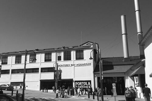 Monterey Cannery Row - Monterey Bay Aquarium