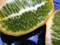 Seeds in a Kiwano 4