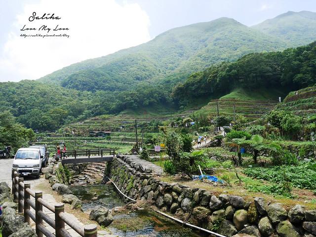 陽明山繡球花季一日遊竹子湖景點