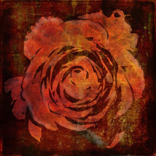 Rose digital collage