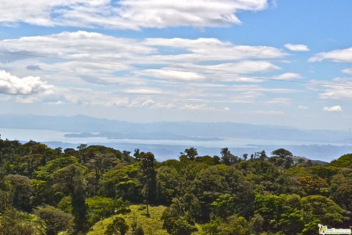 views of rain forest and pacific ocean costa rica