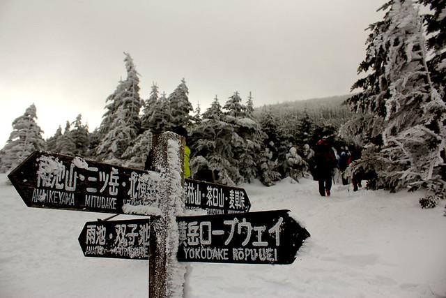八ヶ岳_71