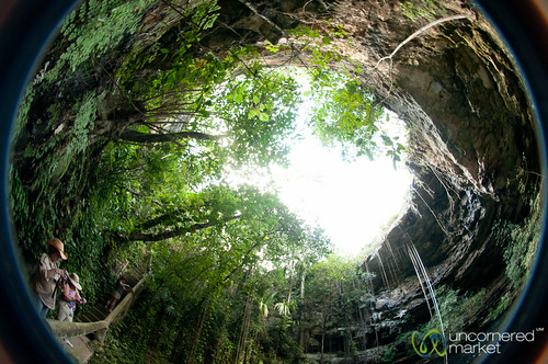Fisheye View from Inside Xochempich Cenote - Yucatan, Mexico