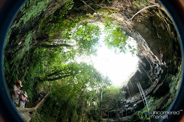 Fisheye View from Inside Xochempich Cenote - Yucatan, Mexico