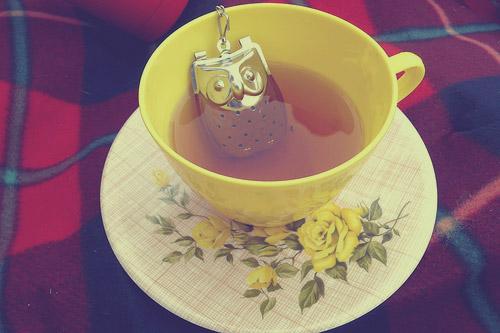 tea-owl