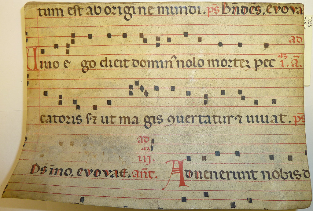 Parchment leaf from a liturgical music ms  (probably an an