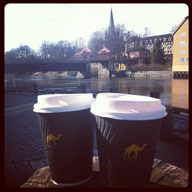 Dromedar-kaffe ved Nidelva