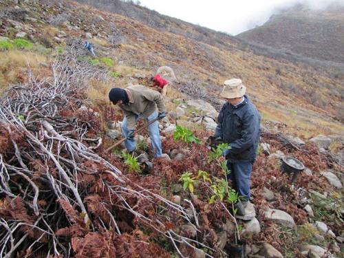Foto 14-Campo de Educação Ambiental do Cabeço da Lenha-12.02.12(RQ)