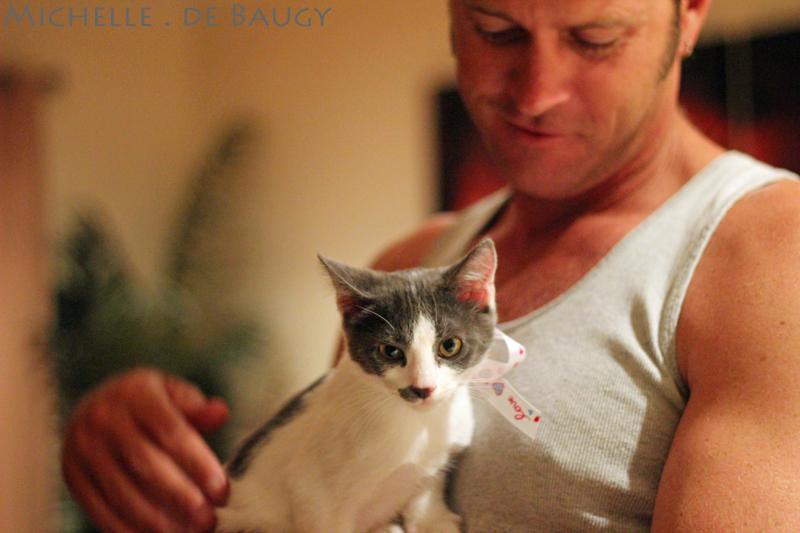 kittenblog001