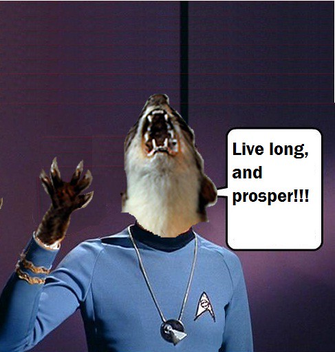 Spocknita
