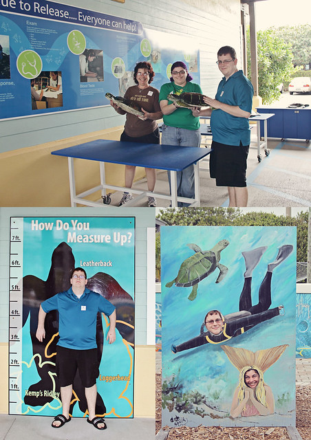 Loggerhead marine life center 25
