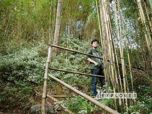 Maryknoll Ecological Santuary