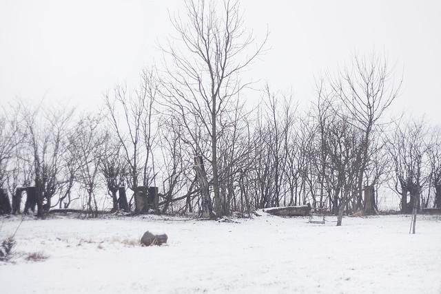 hejregina snö