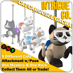 Intrigue Co. Cat Carousel Gacha