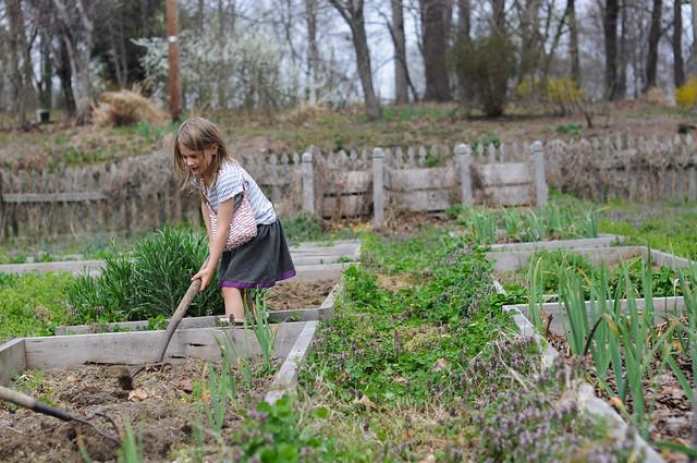March 16 Garden