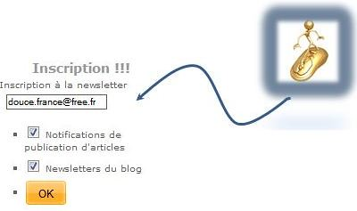 Inscription newsletter avec fleche