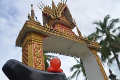 Pulpito @ Don Khon (Laos)