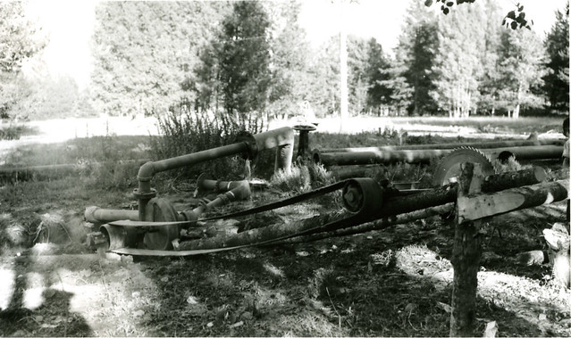 Logging Camp Saws