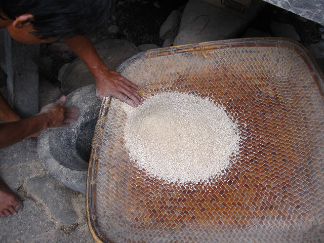 Pounding rice in the Philippines