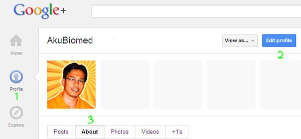 Menghubung kandungan blog dengan Google+ Profile