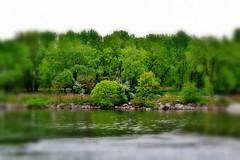 Al otro lado del rio / Across the river
