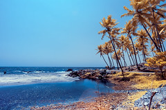 Kovalam Beach, Trivandrum, Kerala India (Infrared Photography)