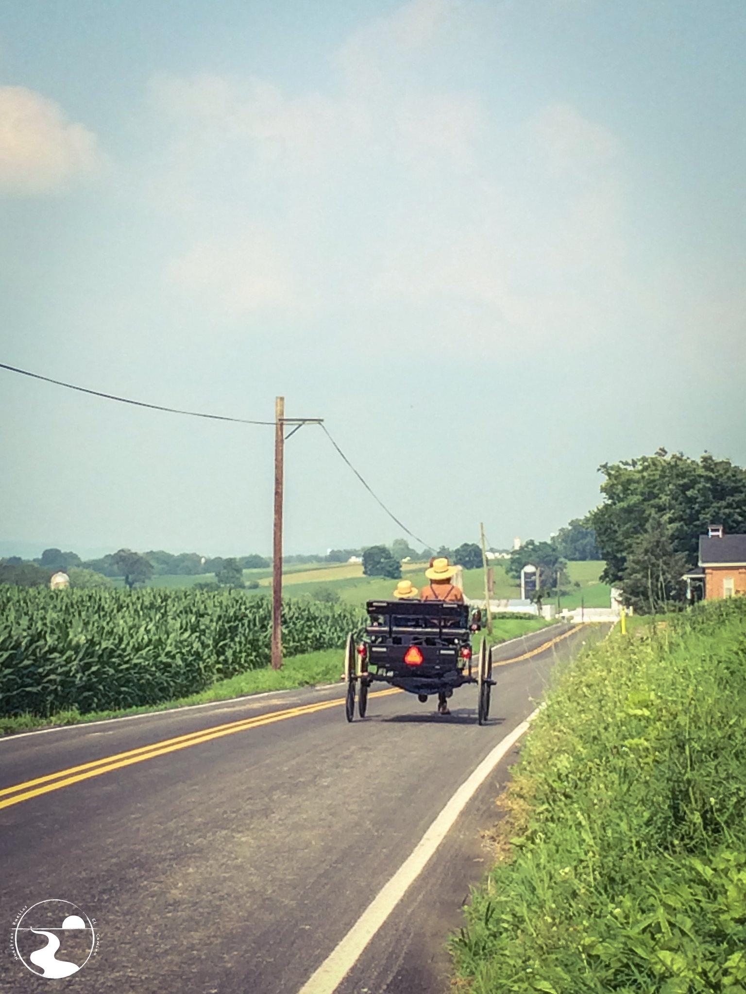 Amish en su salsa