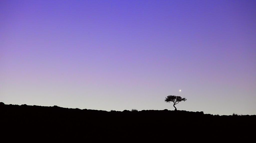Venus at Patagonia