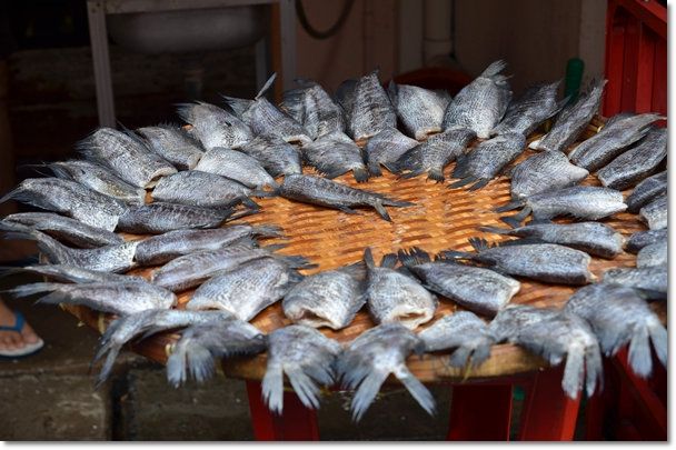 Drying Salted Fish