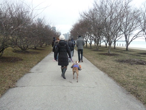 Walking along the lakefront