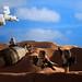 """Look sir, droids!"" by Blockaderunner"