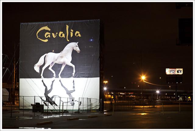 Cavalia 3