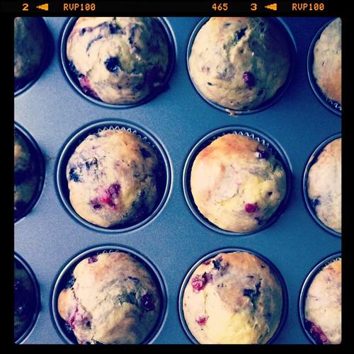 Tortine al quark e frutti di bosco Muffins  al quark, fiocchi d'avena e uvetta [Iphone]