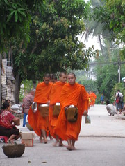Young Monks in Luang Prabang