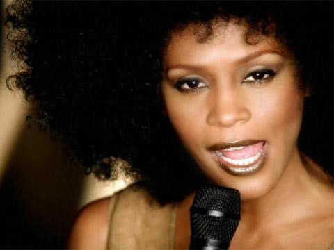 whitney-houston-i-learned-from-the-best