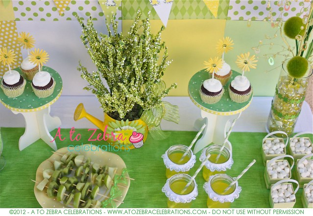 AtoZebra_SpringParty-0009