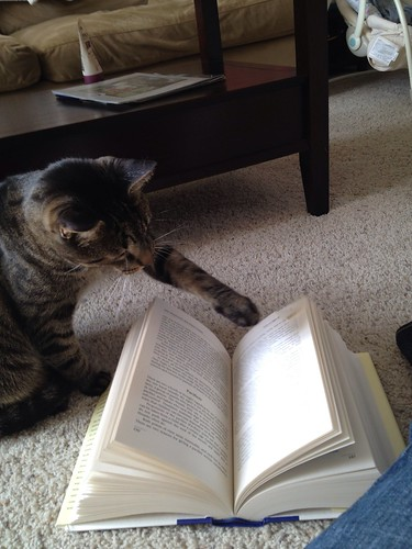 He's quite the reader.