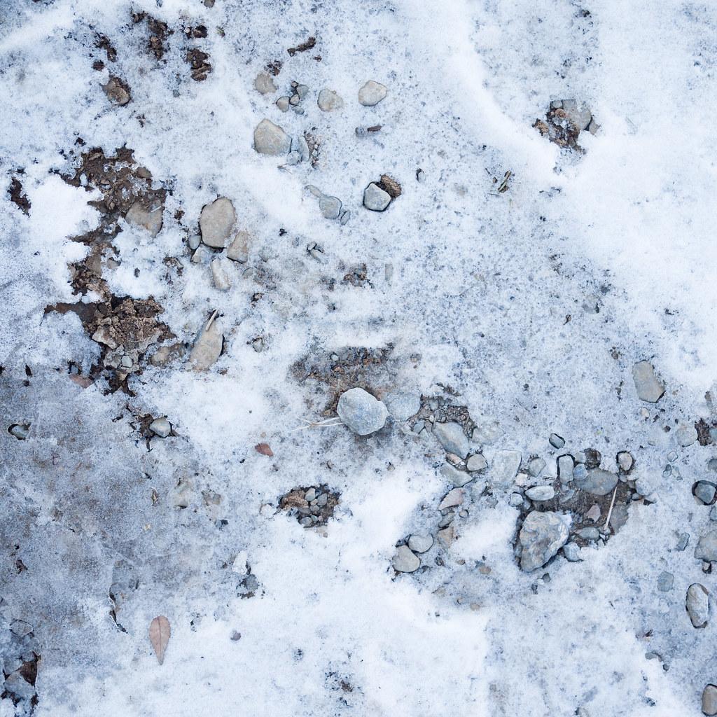 雪 2012/02/19 P1080875